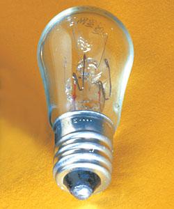 Pilot Light Bulb